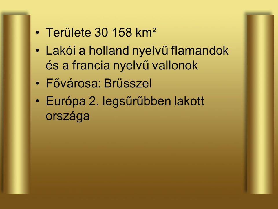 Területe 30 158 km² Lakói a holland nyelvű flamandok és a francia nyelvű vallonok. Fővárosa: Brüsszel.
