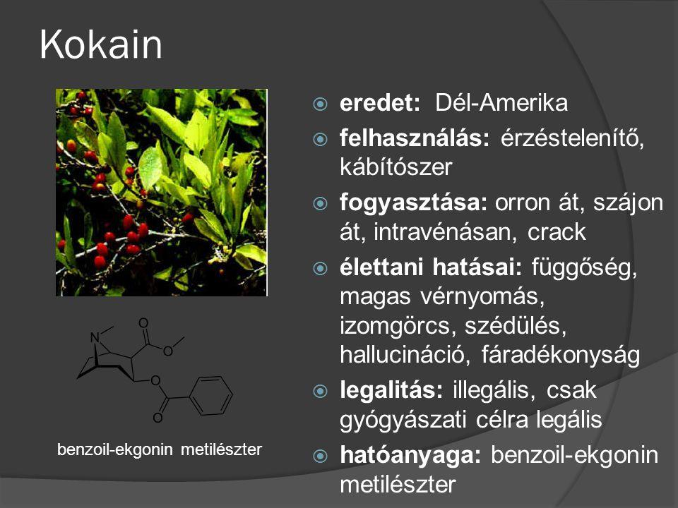 Kokain eredet: Dél-Amerika felhasználás: érzéstelenítő, kábítószer