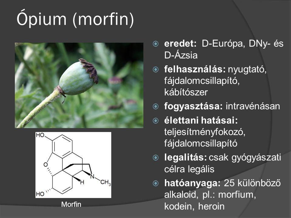 Ópium (morfin) eredet: D-Európa, DNy- és D-Ázsia