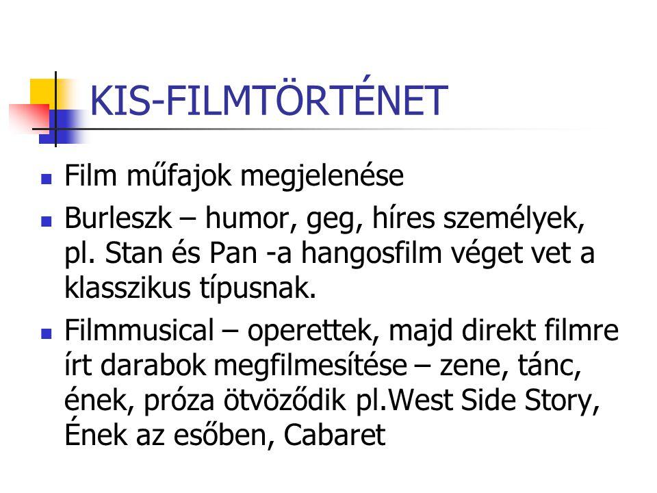 KIS-FILMTÖRTÉNET Film műfajok megjelenése