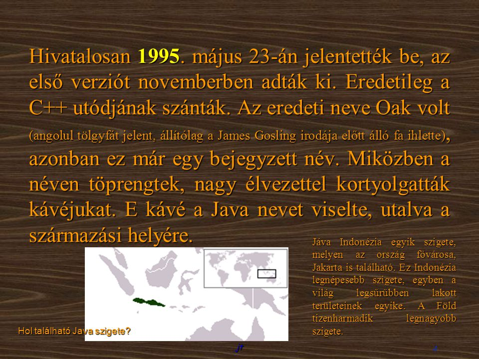Hivatalosan 1995. május 23-án jelentették be, az első verziót novemberben adták ki. Eredetileg a C++ utódjának szánták. Az eredeti neve Oak volt (angolul tölgyfát jelent, állítólag a James Gosling irodája előtt álló fa ihlette), azonban ez már egy bejegyzett név. Miközben a néven töprengtek, nagy élvezettel kortyolgatták kávéjukat. E kávé a Java nevet viselte, utalva a származási helyére.