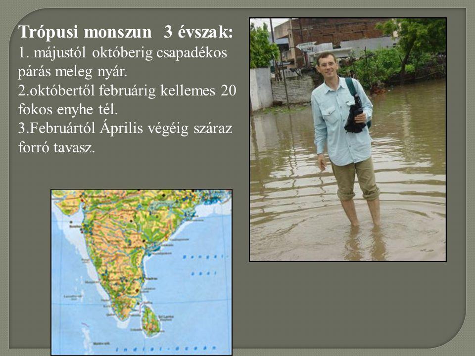 Trópusi monszun 3 évszak: