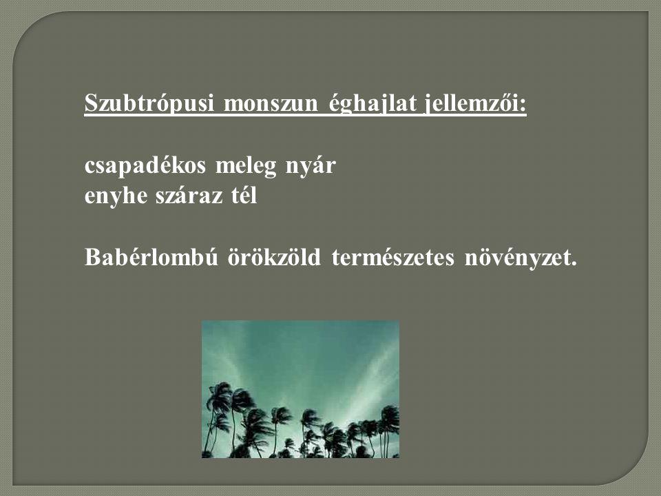 Szubtrópusi monszun éghajlat jellemzői: