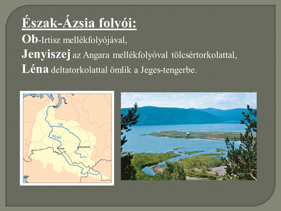 Észak-Ázsia folyói: Ob-Irtisz mellékfolyójával,