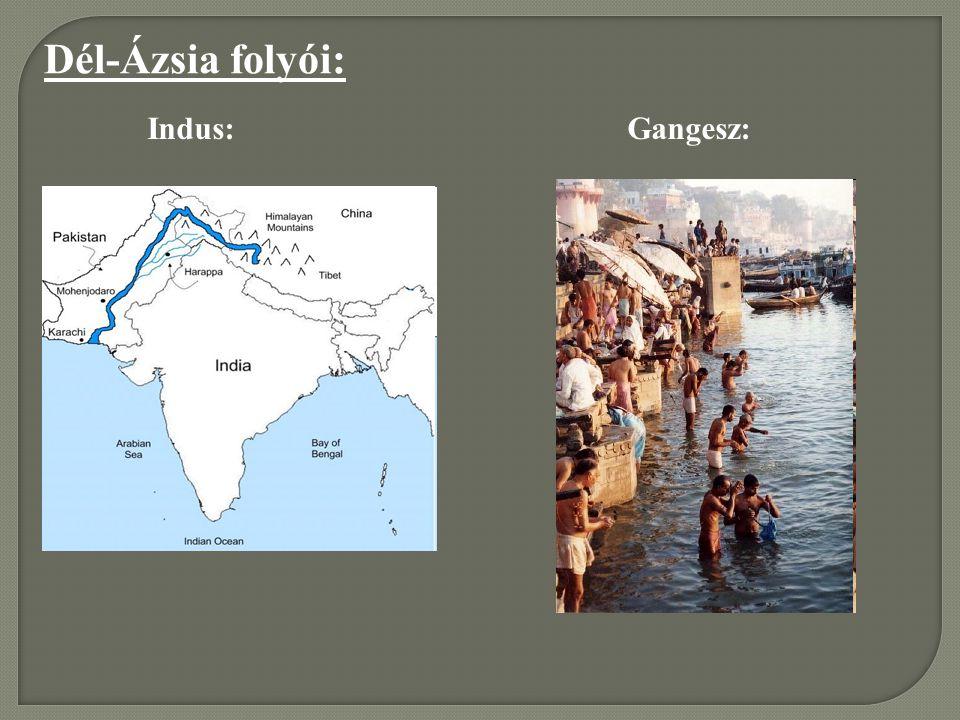 Dél-Ázsia folyói: Indus: Gangesz: