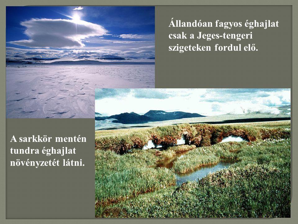 Állandóan fagyos éghajlat csak a Jeges-tengeri szigeteken fordul elő.