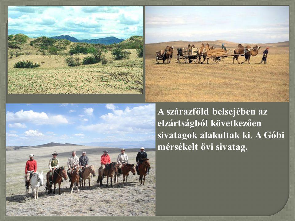 A szárazföld belsejében az elzártságból következően sivatagok alakultak ki.