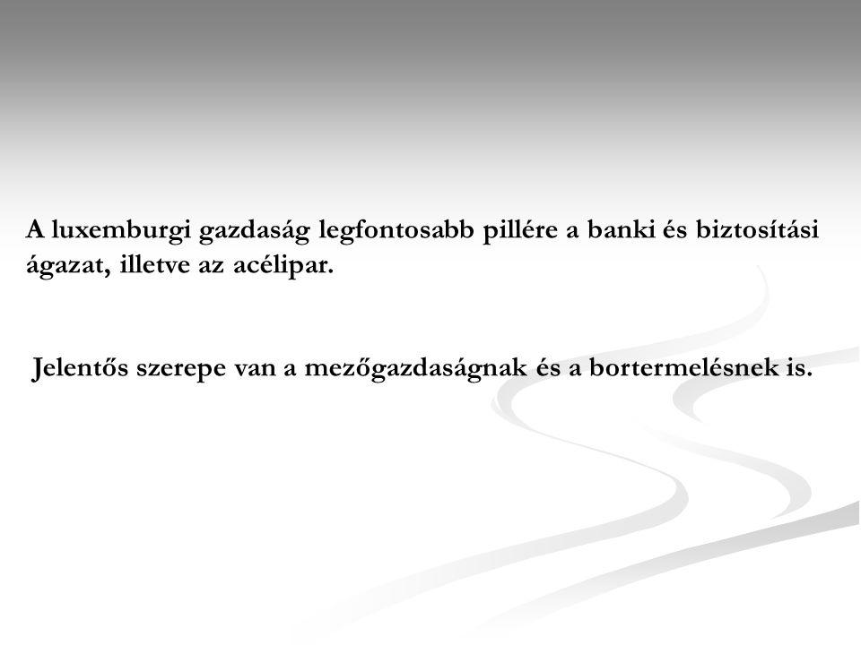 A luxemburgi gazdaság legfontosabb pillére a banki és biztosítási ágazat, illetve az acélipar.