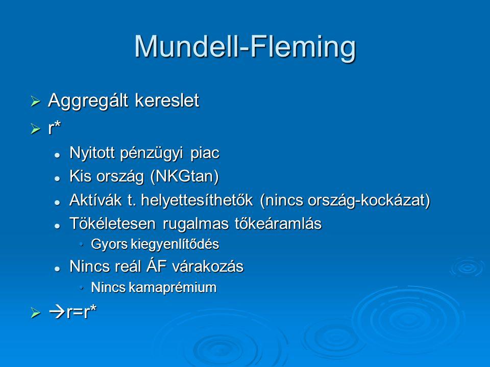 Mundell-Fleming Aggregált kereslet r* r=r* Nyitott pénzügyi piac