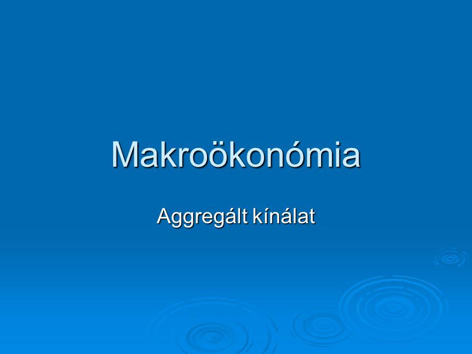 Makroökonómia Aggregált kínálat