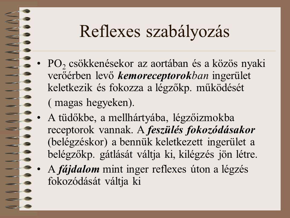 Reflexes szabályozás