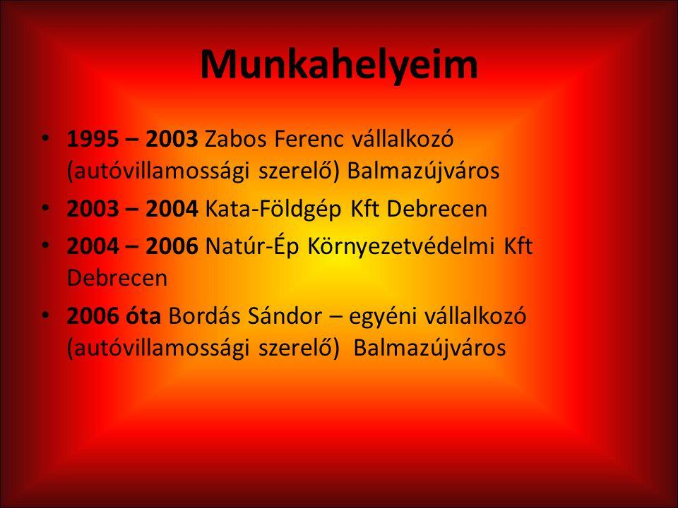 Munkahelyeim 1995 – 2003 Zabos Ferenc vállalkozó (autóvillamossági szerelő) Balmazújváros. 2003 – 2004 Kata-Földgép Kft Debrecen.