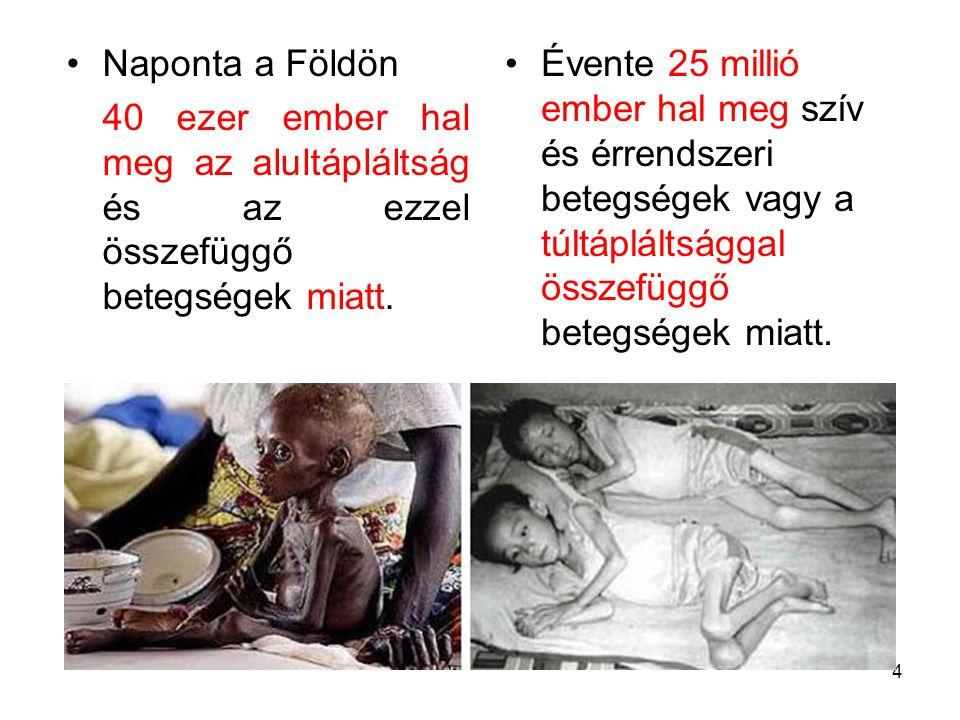 Naponta a Földön 40 ezer ember hal meg az alultápláltság és az ezzel összefüggő betegségek miatt.