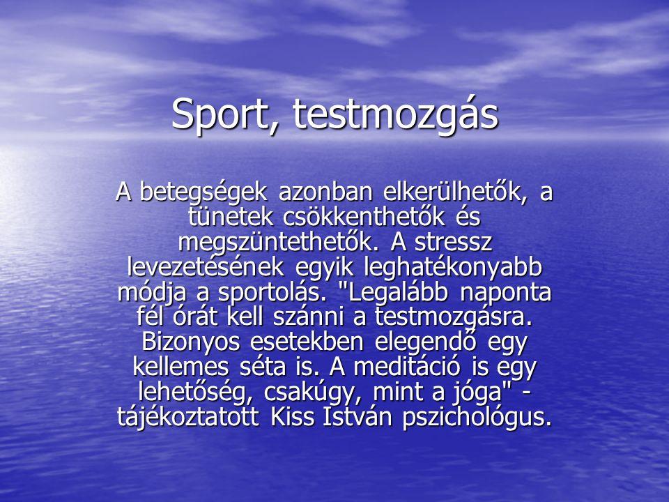 Sport, testmozgás