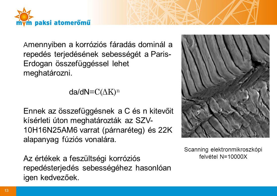 Scanning elektronmikroszkópi felvétel N=10000X