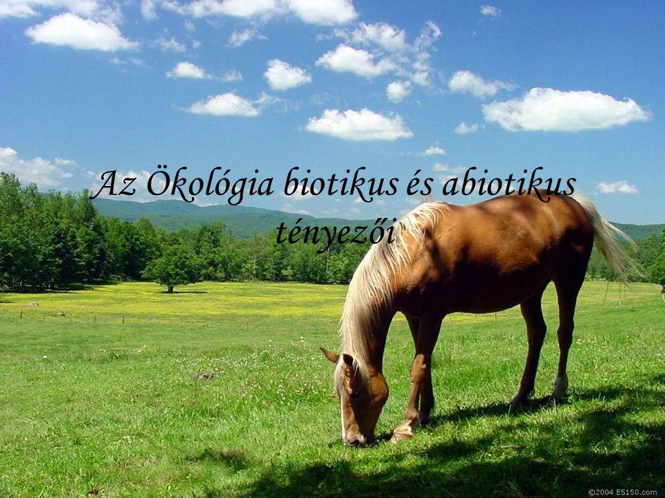 Az Ökológia biotikus és abiotikus tényezői