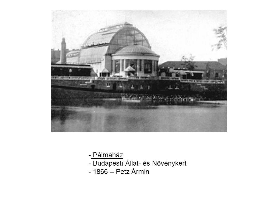 Pálmaház Budapesti Állat- és Növénykert 1866 – Petz Ármin