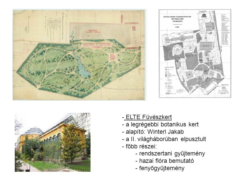 ELTE Füvészkert a legrégebbi botanikus kert. alapító: Winterl Jakab. a II. világháborúban elpusztult.