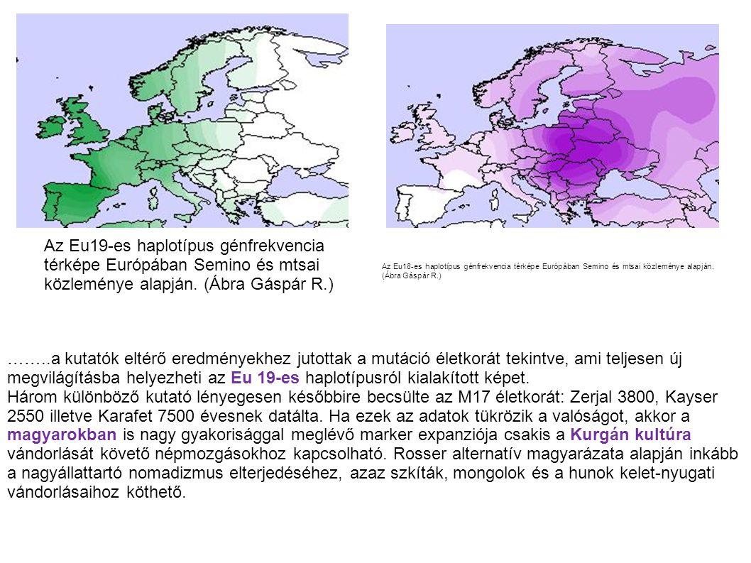 Az Eu19-es haplotípus génfrekvencia térképe Európában Semino és mtsai közleménye alapján. (Ábra Gáspár R.)