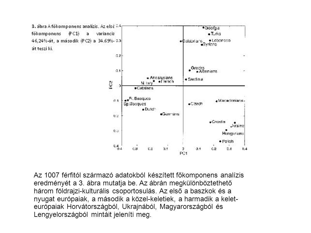 http://toriblog.blog.hu/2009/02/16/a_paleolitikumi