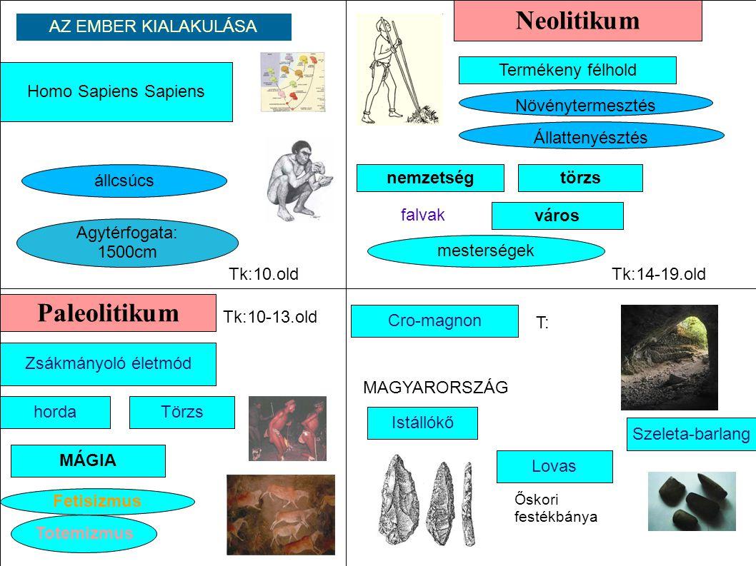Neolitikum Paleolitikum