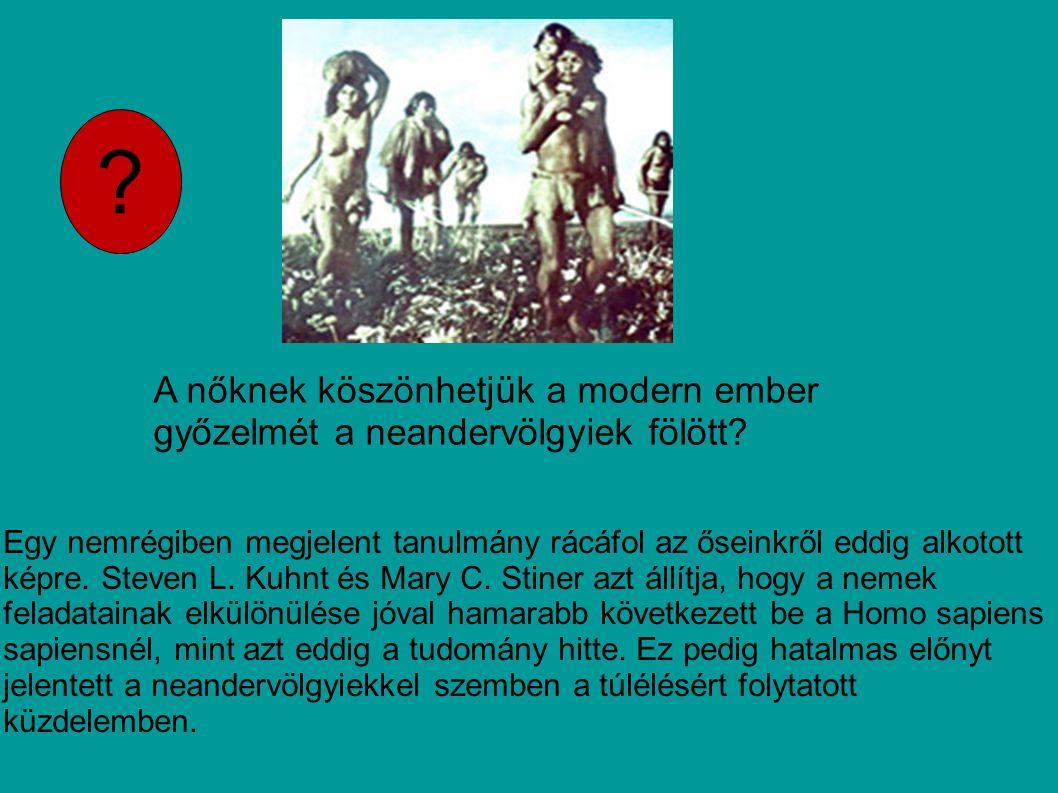 A nőknek köszönhetjük a modern ember győzelmét a neandervölgyiek fölött