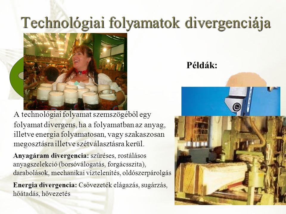 Technológiai folyamatok divergenciája
