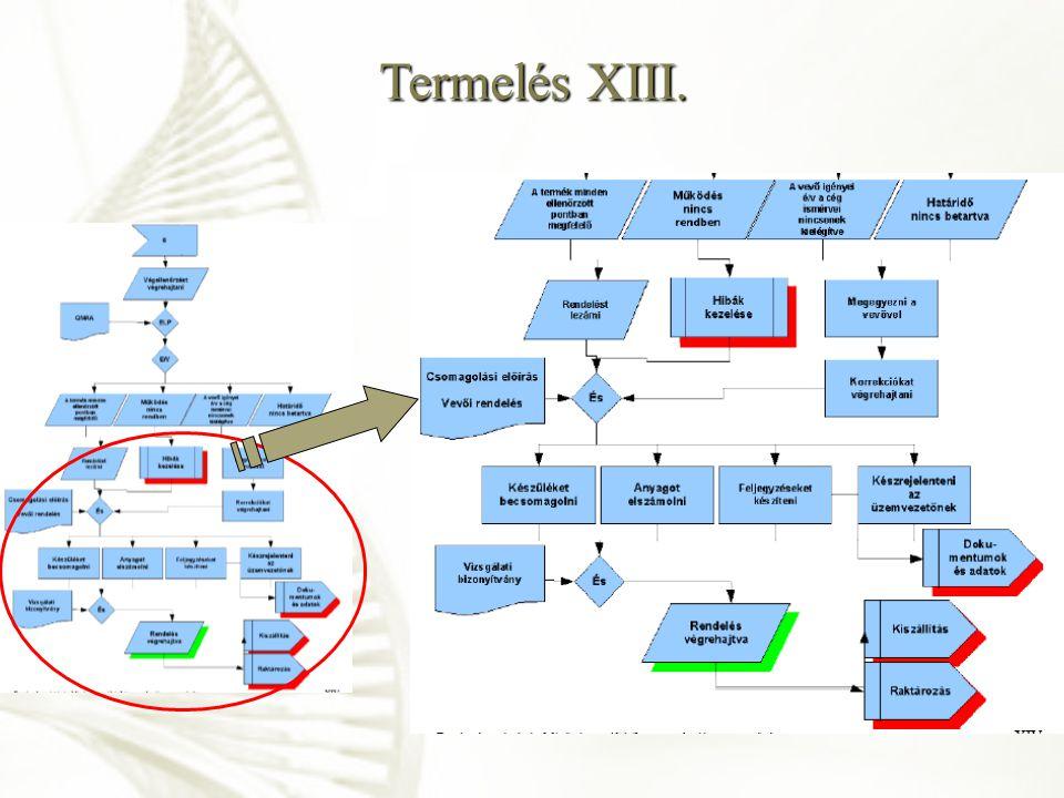 Termelés XIII.