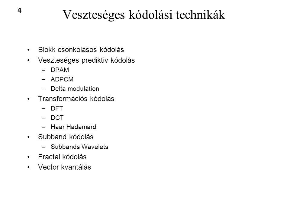 Veszteséges kódolási technikák