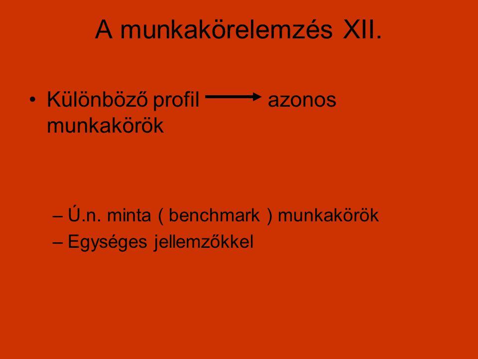 A munkakörelemzés XII. Különböző profil azonos munkakörök
