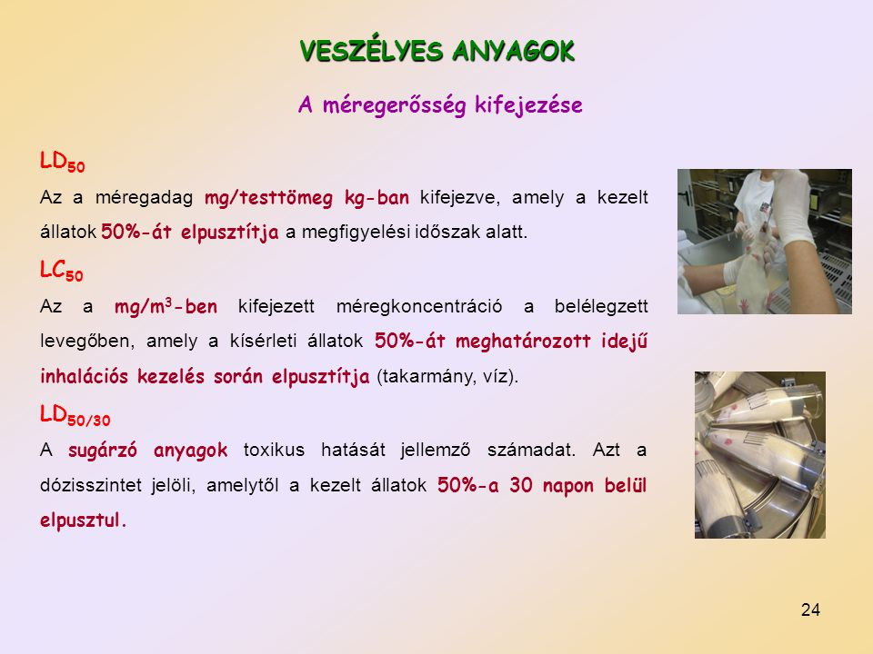 VESZÉLYES ANYAGOK A méregerősség kifejezése LD50 LC50 LD50/30