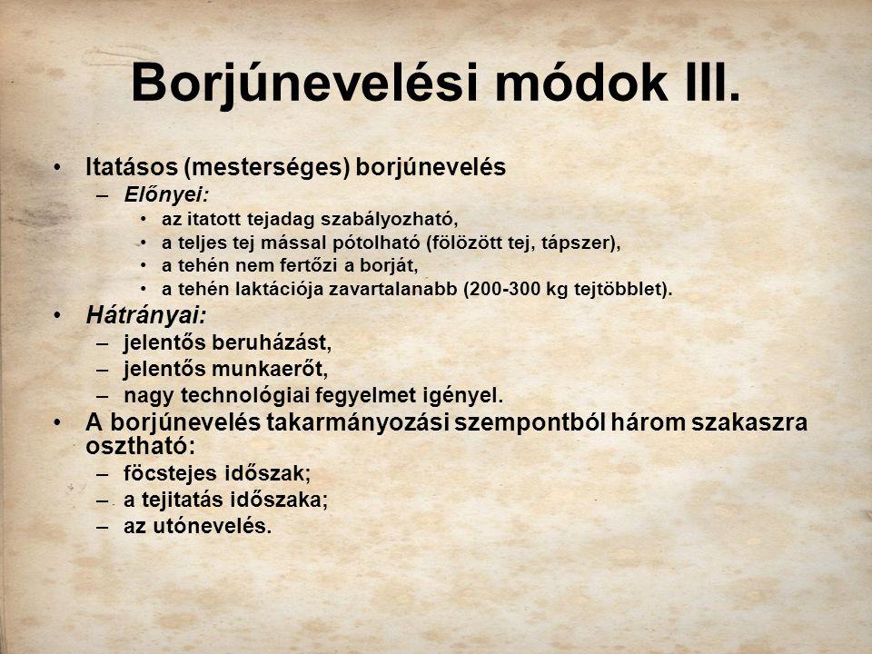 Borjúnevelési módok III.