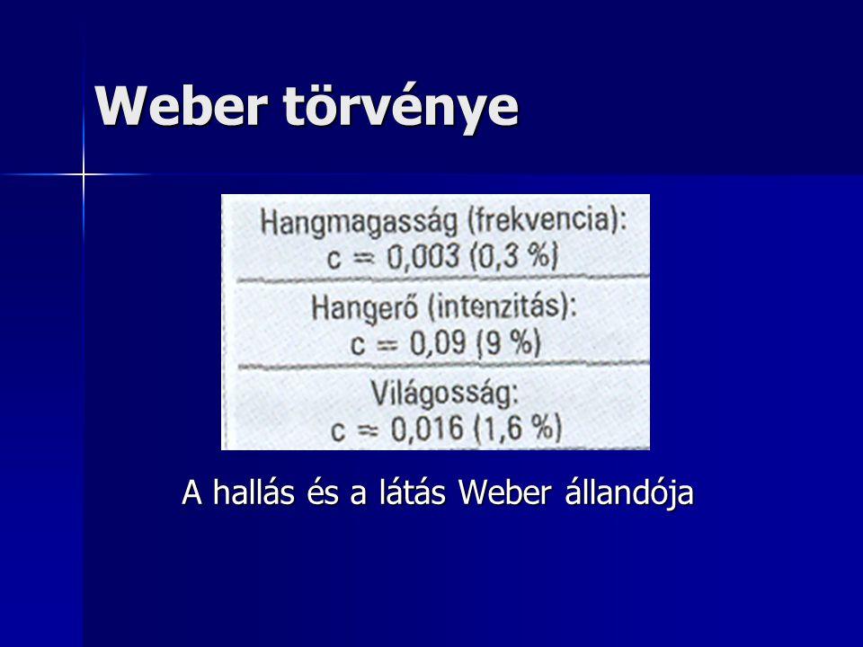 A hallás és a látás Weber állandója