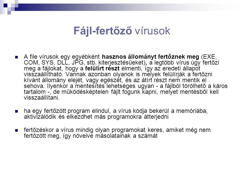 Fájl-fertőző vírusok