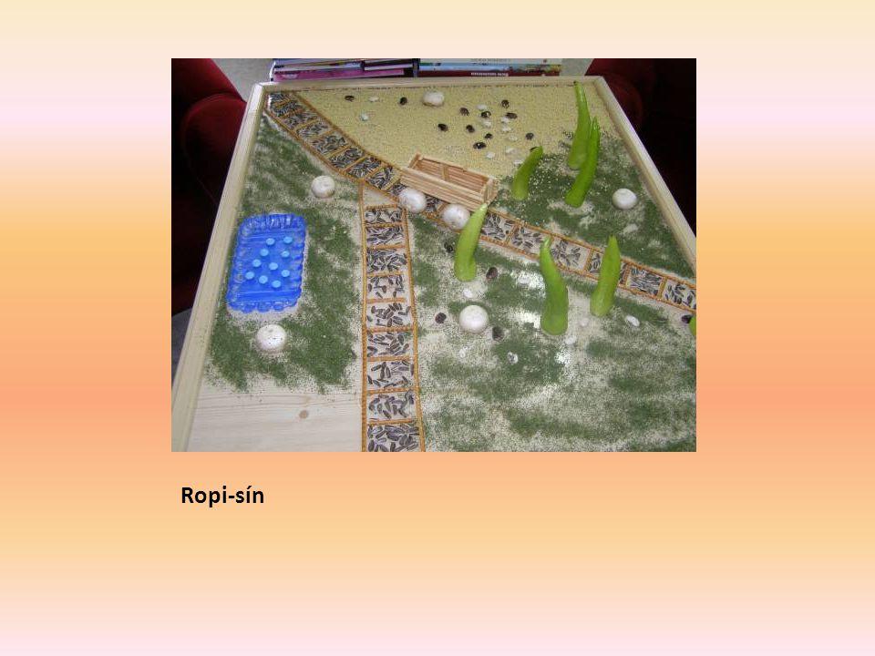 Ropi-sín