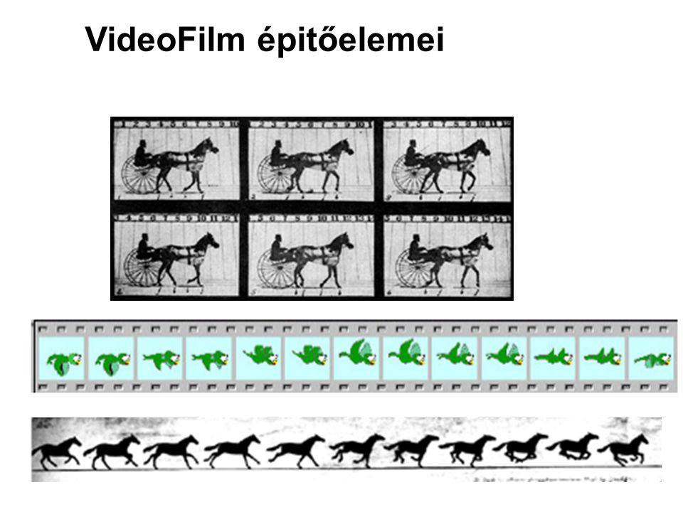 VideoFilm épitőelemei
