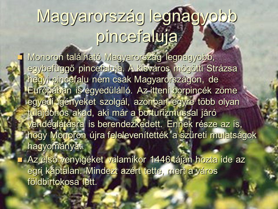 Magyarország legnagyobb pincefaluja