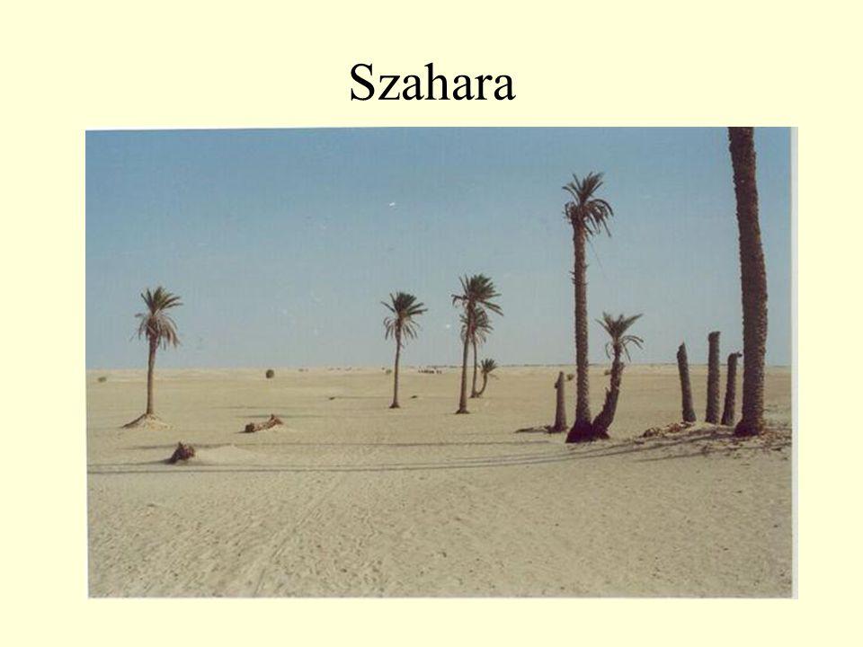 Szahara