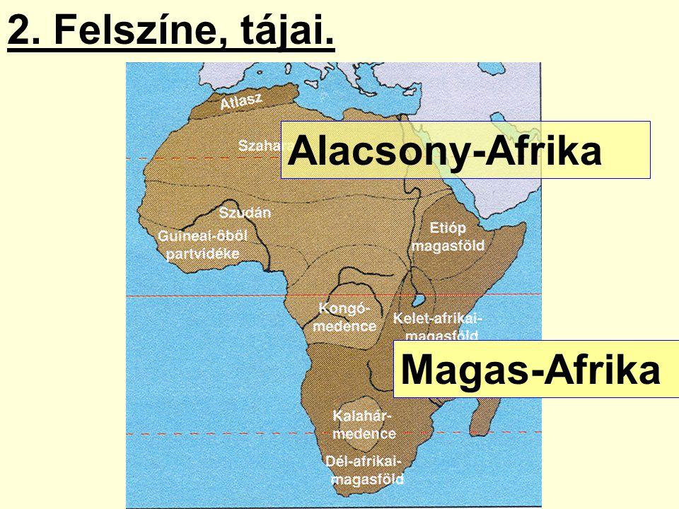 2. Felszíne, tájai. Alacsony-Afrika Magas-Afrika