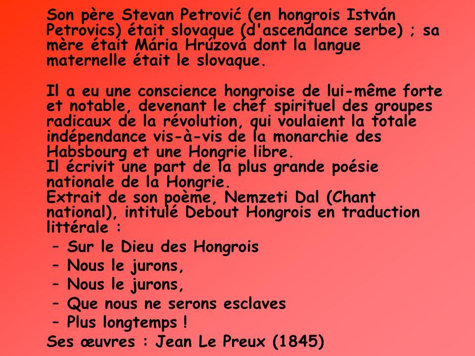 Son père Stevan Petrović (en hongrois István Petrovics) était slovaque (d ascendance serbe) ; sa mère était Mária Hrúzová dont la langue maternelle était le slovaque. Il a eu une conscience hongroise de lui-même forte et notable, devenant le chef spirituel des groupes radicaux de la révolution, qui voulaient la totale indépendance vis-à-vis de la monarchie des Habsbourg et une Hongrie libre. Il écrivit une part de la plus grande poésie nationale de la Hongrie. Extrait de son poème, Nemzeti Dal (Chant national), intitulé Debout Hongrois en traduction littérale :