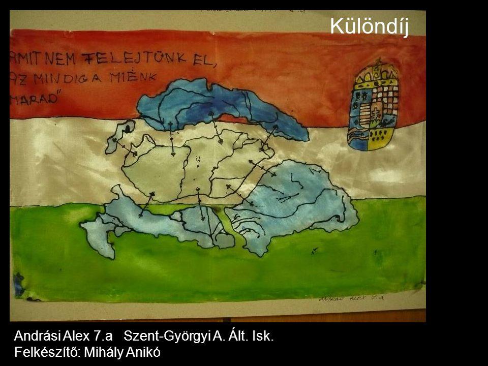 Különdíj Andrási Alex 7.a Szent-Györgyi A. Ált. Isk.