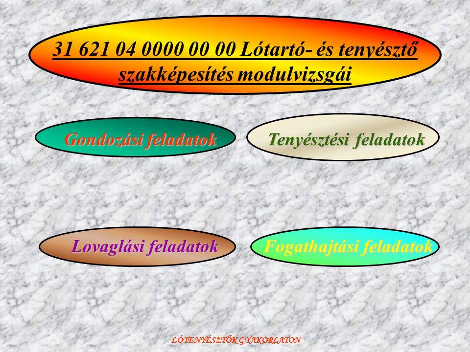 31 621 04 0000 00 00 Lótartó- és tenyésztő szakképesítés modulvizsgái