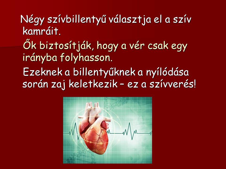 Négy szívbillentyű választja el a szív kamráit.