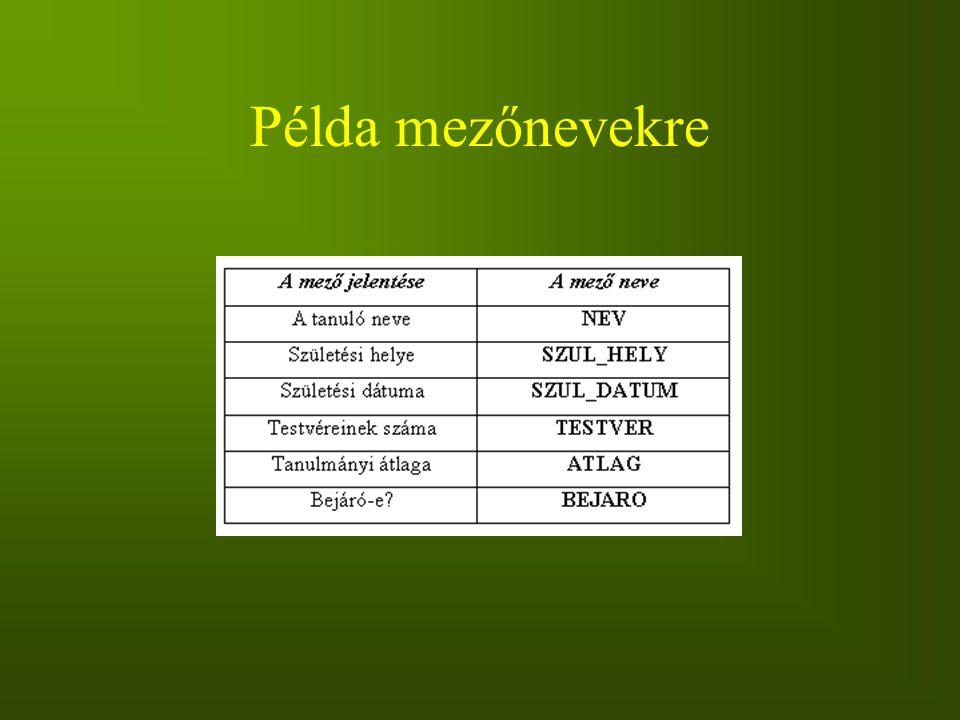 Példa mezőnevekre