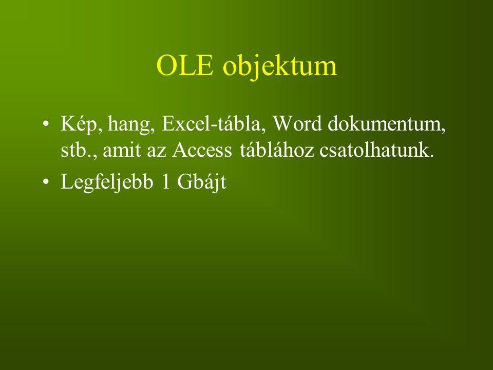 OLE objektum Kép, hang, Excel-tábla, Word dokumentum, stb., amit az Access táblához csatolhatunk.