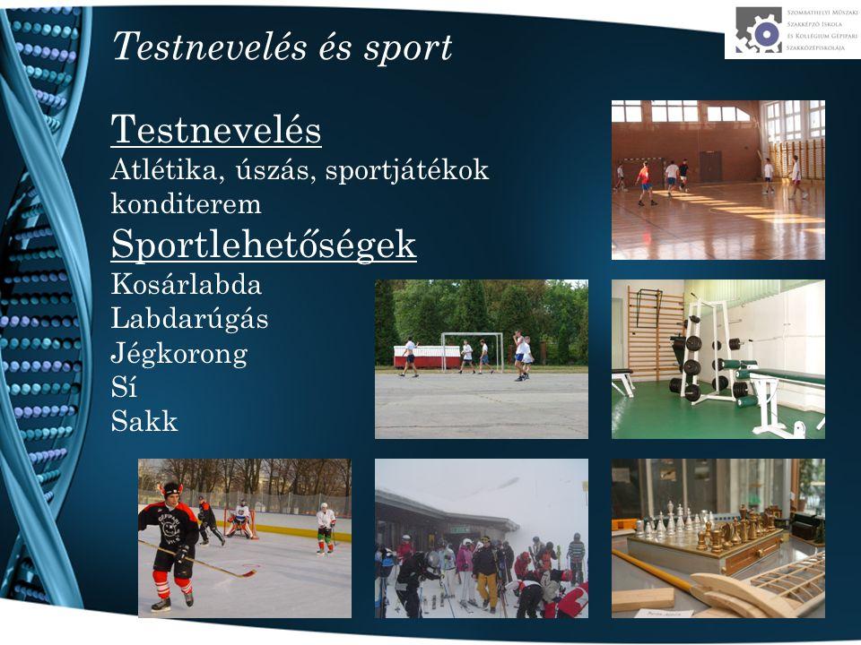 Testnevelés és sport Testnevelés Sportlehetőségek