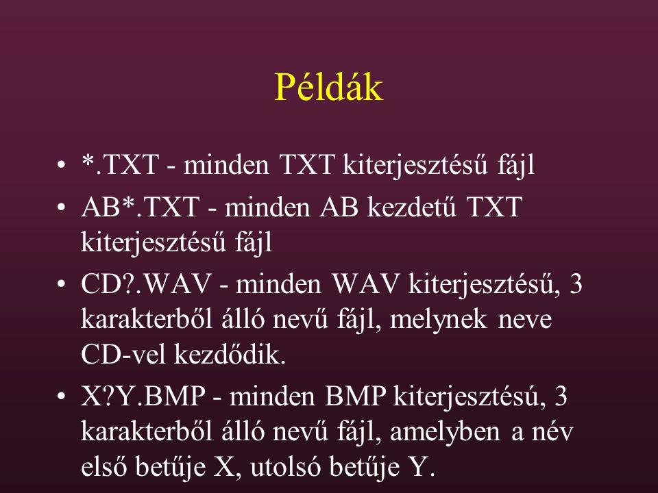 Példák *.TXT - minden TXT kiterjesztésű fájl