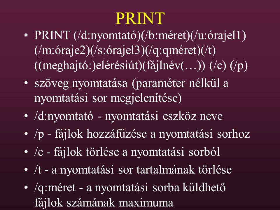 PRINT PRINT (/d:nyomtató)(/b:méret)(/u:órajel1) (/m:óraje2)(/s:órajel3)(/q:qméret)(/t) ((meghajtó:)elérésiút)(fájlnév(…)) (/c) (/p)