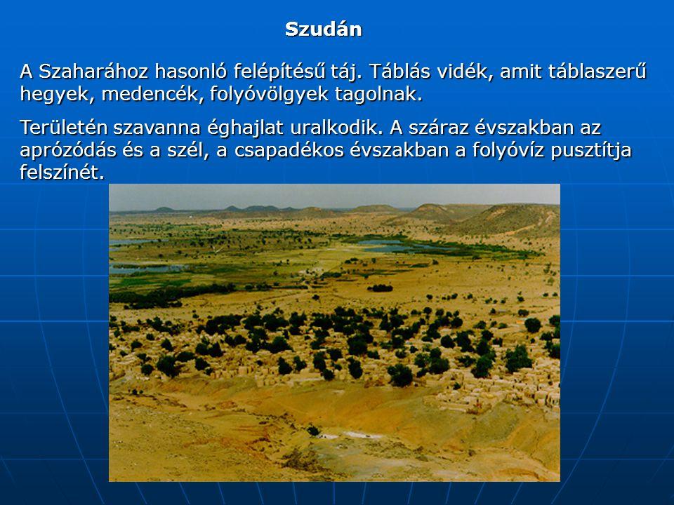Szudán A Szaharához hasonló felépítésű táj. Táblás vidék, amit táblaszerű hegyek, medencék, folyóvölgyek tagolnak.