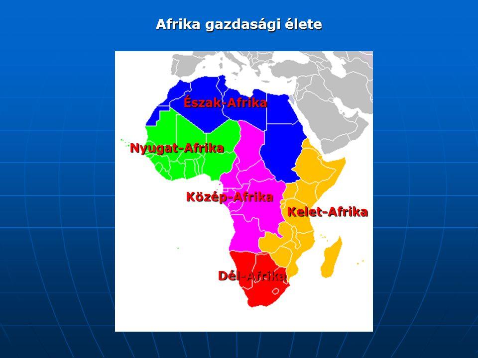 Afrika gazdasági élete